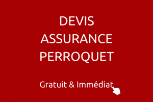 DEVIS-ASSURANCE-PERROQUET-France